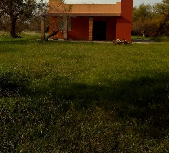 Se venden 24 has con casa en Las Chacras, Lobos.